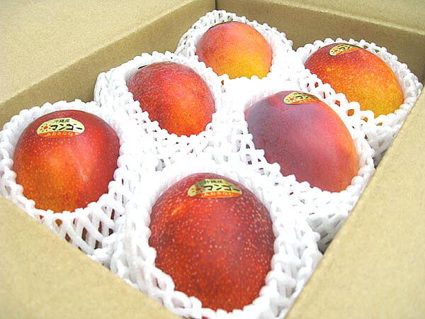 小ぶりでかわいいマンゴ〜♪いっぱい食べられる!