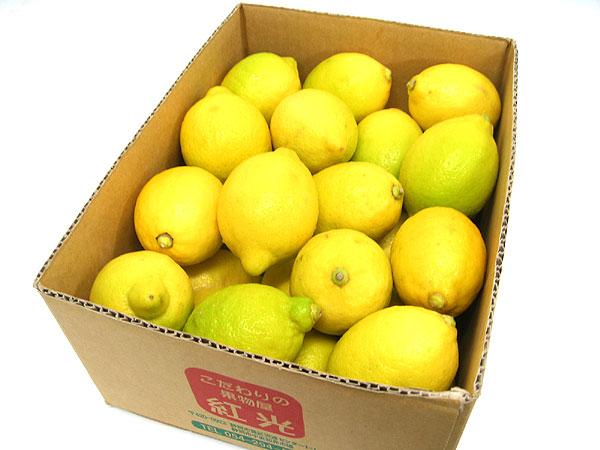 ノンケミカル・防カビ剤未使用、安全輸入レモン