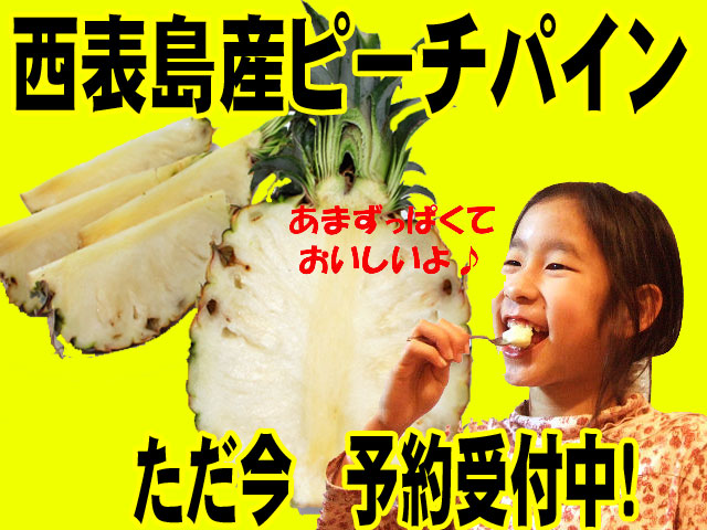 ぜひ一度お召し上がりください。本当においしい沖縄・西表島のピーチパイン!