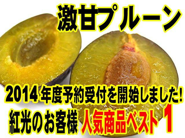 【今年はお届けします!】山田さんのプルーン予約受付開始!