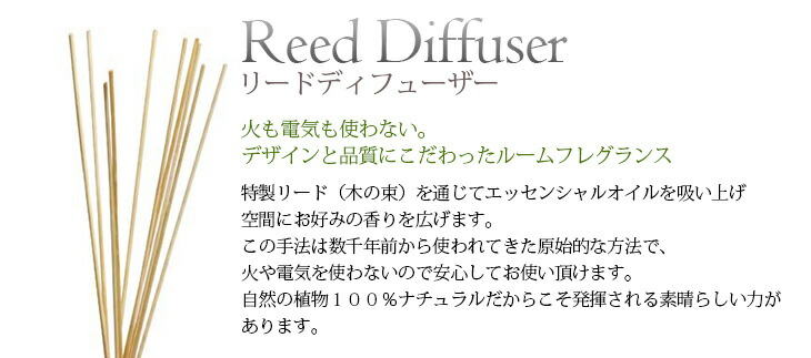 ディフューザー1