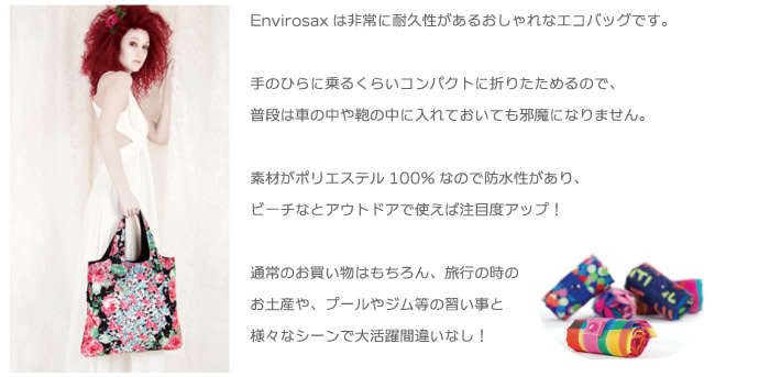 ENVIROSAXとは1