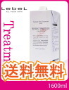 ! Lebel Lebel natural hair treatment with rice protein RP old fresh WP (refill / 1600 g) Natural HairTreatment fs3gm