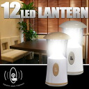 The lantern LED 12LED lantern charge-type battery-free LED flashlight USB charge-type antique stands