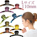 Beauty hair Vance clips L clear slim s heaakuse / hair accessories and hair/Party / invited / head range/hairclip? t s?