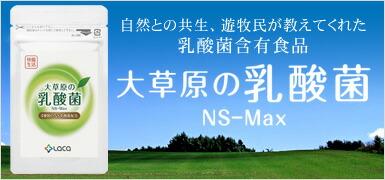 大草原の乳酸菌 NS-Max