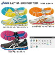 Women suddenly the bargain model 2013 NEW model! The big favorite of ASICs running shoes! Women's LADY GT-2000 NEW YORK New York ( TJG384 )