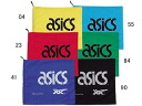 ASICS shoe bags (L)