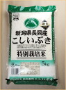 5 kg 5kg 24 year production strained breath special cultivated rice Niigata Prefecture 5 km gift