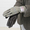 PETER JAMES (Peter James) Harris Tweed leather combination glove, HAGL-0241302
