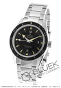 Omega Omega Seamaster 300 m master co-axial mens 233.30.41.21.01.001 watch clock