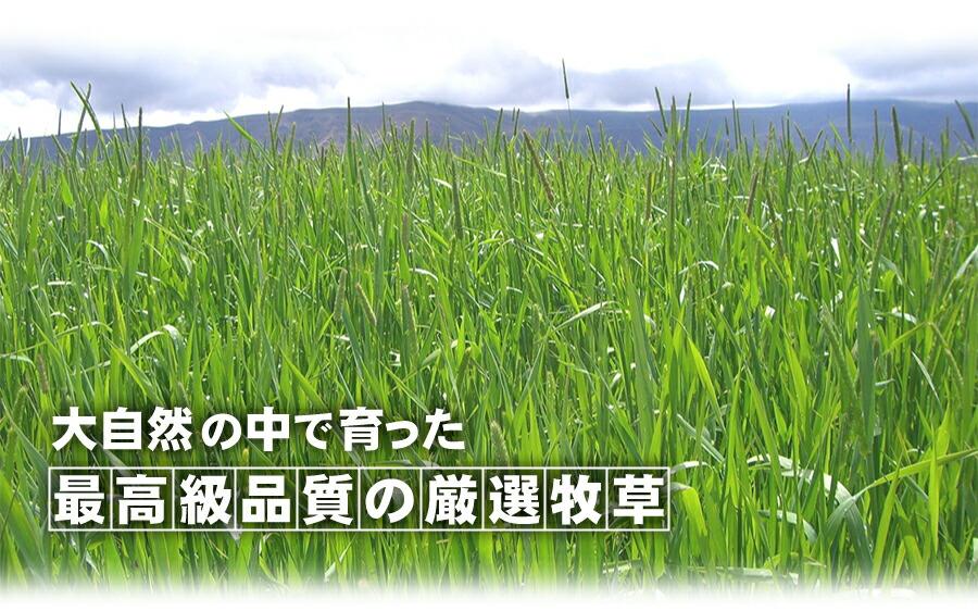 大自然の中で育った最高級品質の厳選牧草