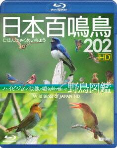 シンフォレストBlu-ray 日本百鳴鳥 202 HD ハイビジョン映像と鳴き声で愉しむ野鳥図鑑[RDA-16][Blu-ray/ブルーレイ]