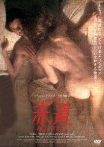 赤道[KIBF-4133][DVD] 製品画像