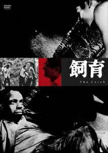 飼育[KKJS-53][DVD] 製品画像
