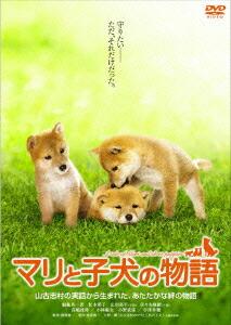 マリと子犬の物語 スタンダード・エディション[TDV-18211D][DVD] 製品画像