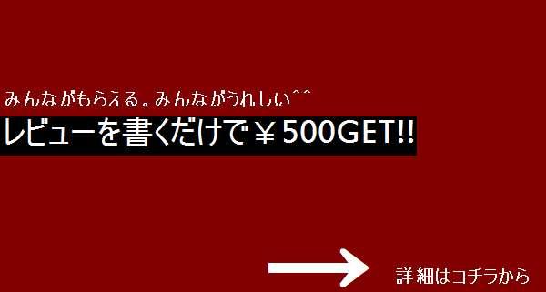 レビューで500円GET!