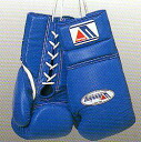 Winning 16 oz professional boxing glove for training