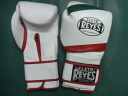 レイジェス boxing gloves 14 oz magic formula tricolor