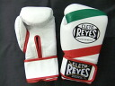 レイジェス boxing gloves 8 oz magic formula tricolor