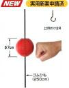 Winning ビョンビョン ball