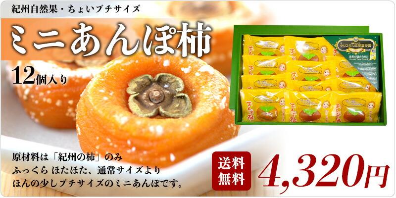 ミニあんぽ柿12個入