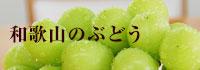 和歌山のぶどう