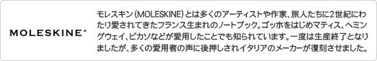 モレスキン(モールスキン)/MOLESKINE/について