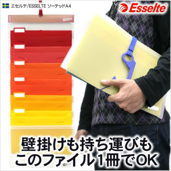 壁掛けも持ち運びもこのファイル1冊でOK エセルテ/ESSELTE ソーテッドA4