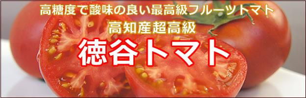 徳谷トマト