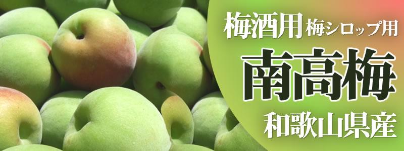 南高梅 梅酒梅シロップ用 和歌山県産