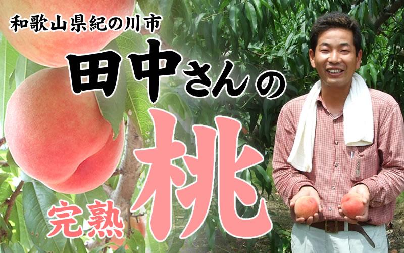 和歌山県紀の川市田中さんの完熟桃
