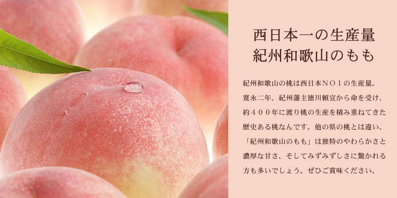 西日本一の生産量 紀州和歌山のも  も