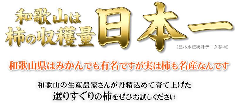 西浦さんちの柿(かき・カキ)を産地直送
