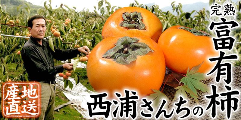 和歌山県かつらぎ町から西浦さんの完熟富有柿