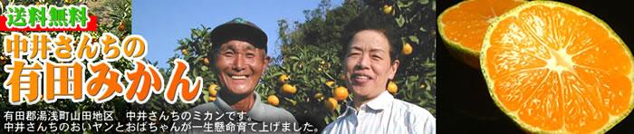 中井さんちの和歌山みかん