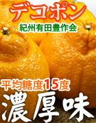 豊作会・有田みかん味暦デコポン