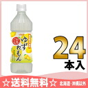 500 ml of 24 Daidoh citron ごこちゆずれもん pet Motoiri [citron lemon citron lemon]