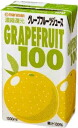 Marusan grapefruit 100 1000ml paper Pack 6 pieces