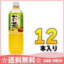900 ml of 12 sun Gaul this tea pet Motoiri []