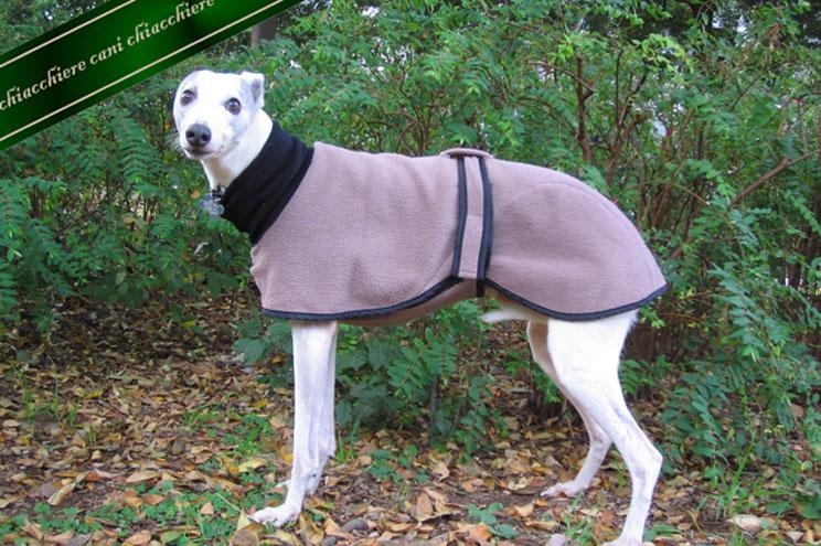 犬用ホームコート