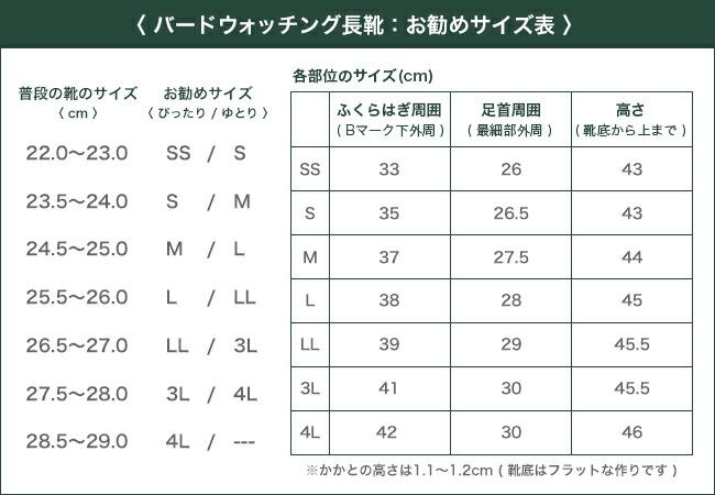 日本野鳥の会 サイズ表 サイズチャート 足のサイズ