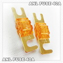 ANL fuse 40A