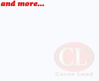 carnalead-link.jpg