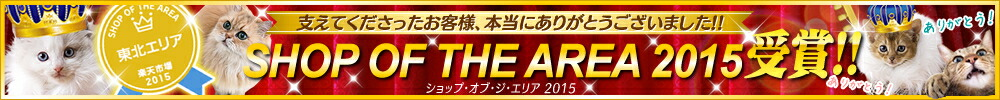 SHOP OF THE AREA 2015受賞