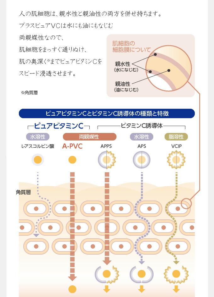 ピュアビタミンCと誘導体の種類