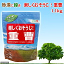 Is fun with green in the desert; cleansing sodium bicarbonate 1. 1 kg of Kanto day convenience