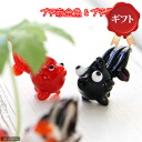 Suitable for small glasses collection goldfish (Petite red & Petite black) set gift specifications Kanto flight day