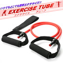 Use the repulsive force of tube, easy training ♪ exercise tubing
