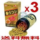 Universal turmeric spring turmeric grain X3 box to energize the body [1000-grain X3]